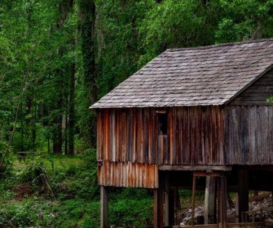 История из Папуа-Новой Гвинеи